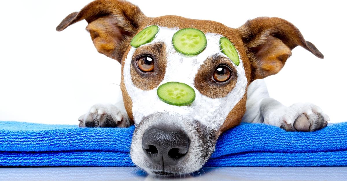 Vitaminos arcpakolások a konyhából