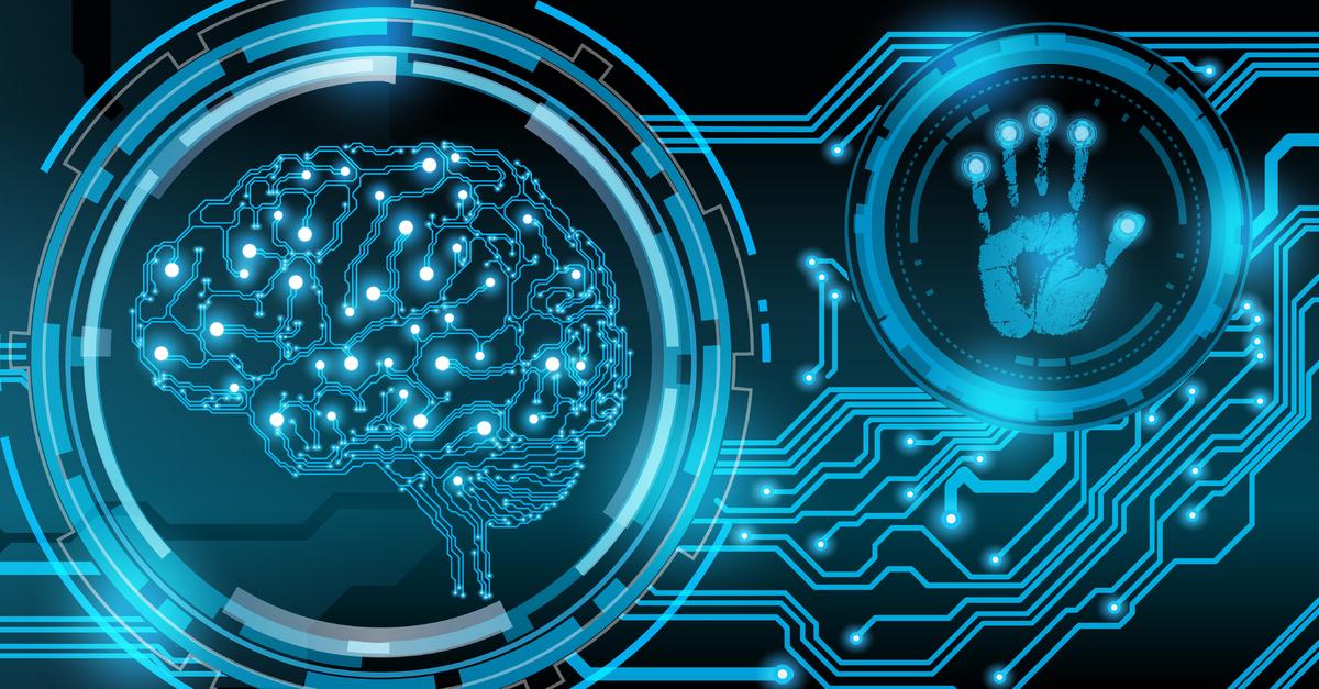 Így diktál az agy órarendje