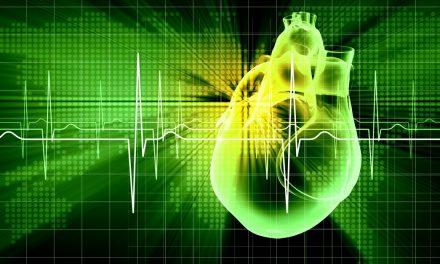 Szívvitaminok: így erősíthető a szívizom