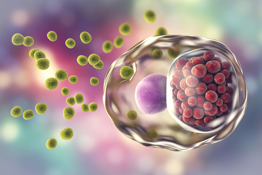 Omega-3 a rejtőző krónikus gyulladások ellen